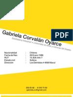 CV2010+Portafolio