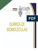 Biomoleculas_Carbohidratos