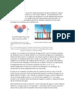 DIPOLO ELÉCTRICO completo.docx