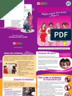 diptico.pdf