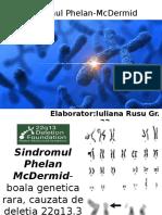 Sindromul Phelan McDermid