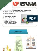 Calculo Balance energetico Bioquimica.
