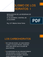 METABOLISMO DE LOS CARBOHIDRATOS
