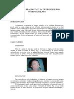 ACCIDENTE_TRAUMATICO_OROFARINGE.doc