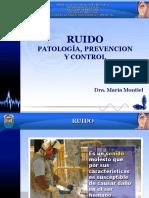 LUZ - MARIA MONTIEL - ruido ocupacional.pdf