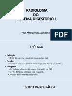 Sistema Digestorio 1