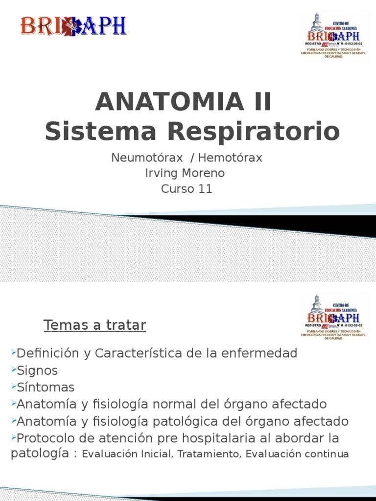 ANATOMIA II Neumotorax Hemotorax