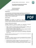 Microbiologia - Informe 3-COLORACIONE