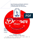 Diagnostico General CL Danper