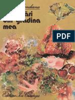 Ana Blandiana - Întâmplări Din Grădina Mea
