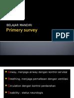 Primery Survey