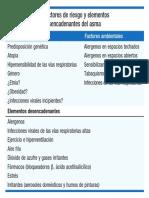 Factores de Riesgo y Elementos Desencadenantes Del Asma