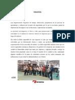 PASANTÍA.docx