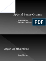 Special Sense Organs Ophthalmicus and Vestibulocochlearis