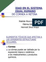 Toxicidad en El Sistema Visual Humano