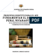 4_Principios_Constitucionales