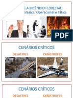 Combate a Incêndios Florestais - MAJOR GOUVEIA
