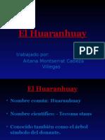Huaranhuay.pptx