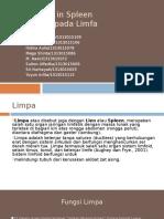 Hiperemia Splen