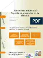 Necesidades Educativas Especiales Presentes en La Escuela