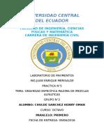 CARATULA PAVIMENTOS.docx