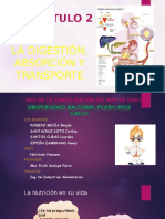 Digestion, Absorcion y Transporte