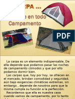 carpas-1213284598141103-8