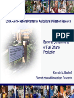 Bacterial Contaminants of Fuel Ethanol Production_Bischoff
