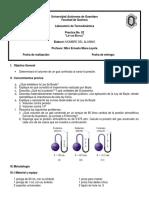 Práctica No 02 - LT