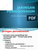 JARINGAN PERIODONSIUM