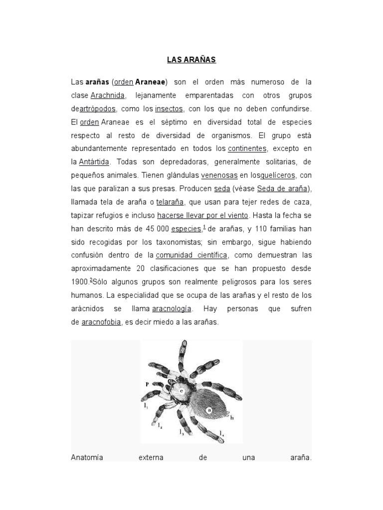 Las Arañas 2