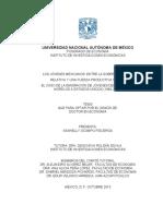 Tesis Doctorado Impresion Sep 2015 Nashelly UNAM