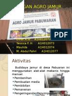 Kunjungan Agro Jamur Fix