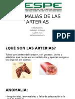 Anomalias de Las Arterias