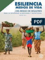 FAO Resiliencia Medios Vida 2013