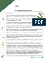 articles-23042_recurso_docxTABACO.docx