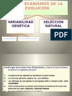 LOS MECANISMOS DE LA EVOLUCIÓN.pptx