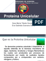 Proteína Unicelular