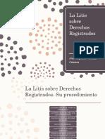 La Litis Sobre Derechos Registrados