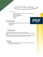 Curriculum Pilar Rico DF