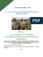 Planta ancestrales