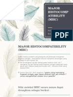 Major Histocompatibility (Mhc)