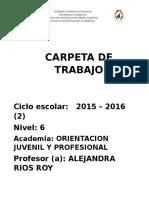 Arr Planeacion Orientacion IV 2016