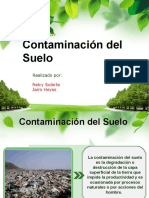 contaminaciondelsuelo2-130602155004-phpapp02.pptx