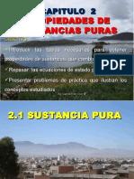 Capítulo__2_(Prop-Sust.pura).ppt