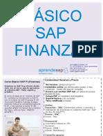 Aprendesap Curso Básico SAP FI