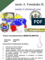 NEMATHELMINTOS2010