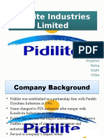 PROJECT_ON_PIDILITE.pptx