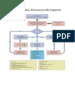 Paediatric Advanced Life Support.docx