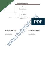Mech AutoCAD Report